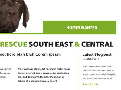 Dog Rescue website dog