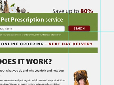 Online Vet Prescriptons by Jennie on Dribbble