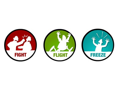Stress Management Icons stress fight flight freeze icons