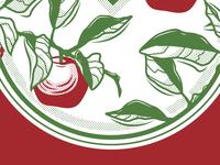 Apples Illustration