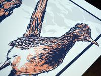 Roadrunner & Coyote Art Print