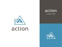 Action Consulting