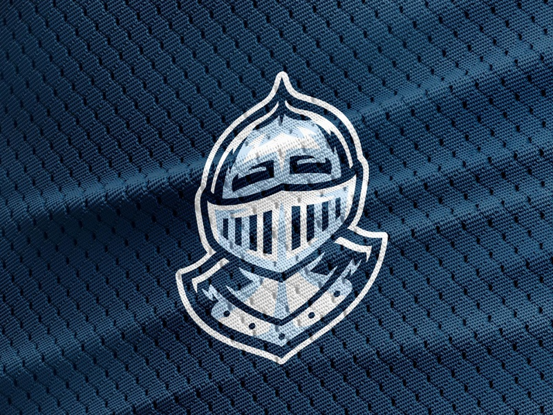 Dean's House Knight school college sports illustration house mascot characterdesign mascot knight logo