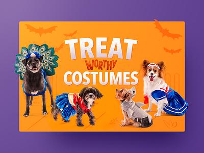Happy Halloween! cute pet chewy shadow illustration cards bats costumes dog halloween happy