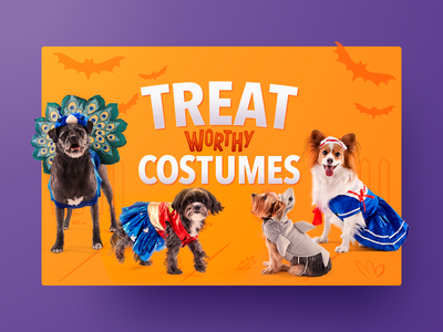 Happy Halloween! cute pet chewy shadow illustration cards bats costumes dog halloween happy