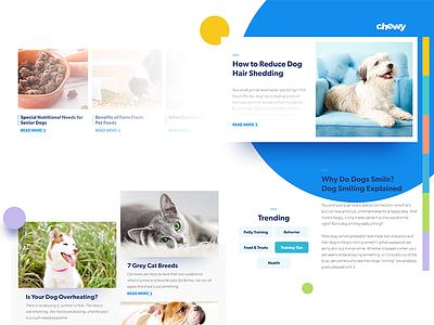 Blog Moodboard mood board blog bright cat dog pet minimal modern setup cards ui ux