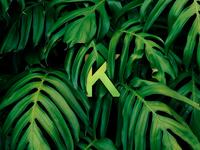 Hidden K