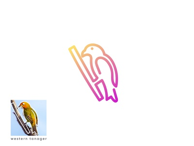 western tanager (bird logo design) 3d branding design brand identity animal flat digital art western tanager birds app icon branding brand line art creative modern logodesign logo bird logo bird