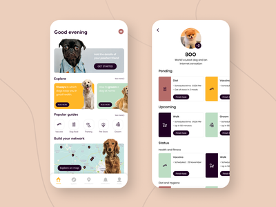 Doggo dog care app dailyui dribbble dog app dog dogs flat icon vector typography app design illustration minimal ui ux