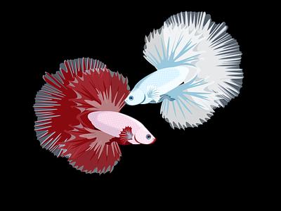 BettaFish betta fish fish art vector design 2d art illustration