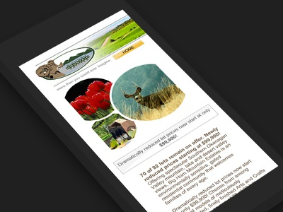 Mobile Web Design & Development by Red Cherry responsive web design web development red cherry