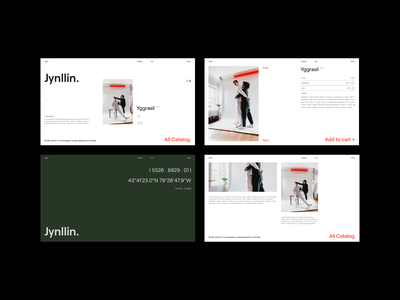 Jynllin Magazine whitespace webdesign interface photography typogaphy uidesign concept graphicdesign design minimal