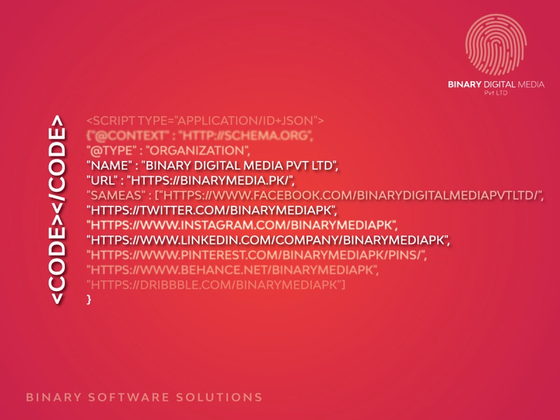 Binary Software Solutions