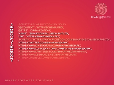 Binary Software Solutions digitalpakistan digitalmarketing creative branding agency branding binarymedia.pk software software development software company software design softwaredevelopment software house