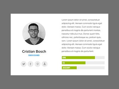 Profile widget profile widget team member skills bio role job description social media