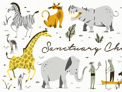 Sanctuary Retreats birds botswana leopard lion zebra africa bush wildlife safari animals