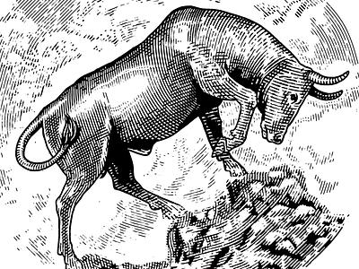 Bullrun business money mountain illustration drawing bw engraving etching identity vintage logo bull