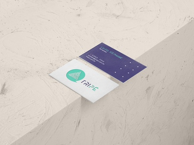 Tripé Project . Visit Card Layout