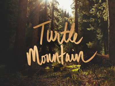 Turtle Mountain logo lettering gold hand