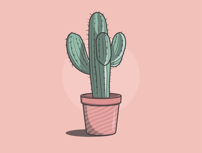 Cacti plants vector minimal illustrator illustration icon graphic design flat design art