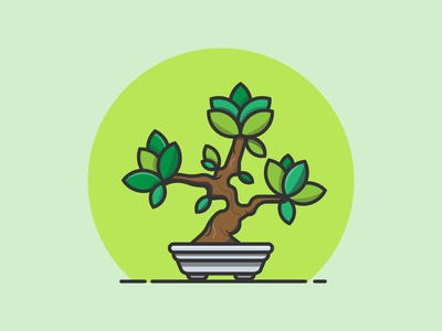 Bonsai tree bonsai plant creative flat design illustrator vector minimal illustration graphic design flat design art