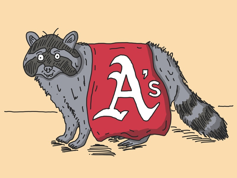 Loose Acquaintances Baseball Club Mascot nature sports illustration design raccoon baseball