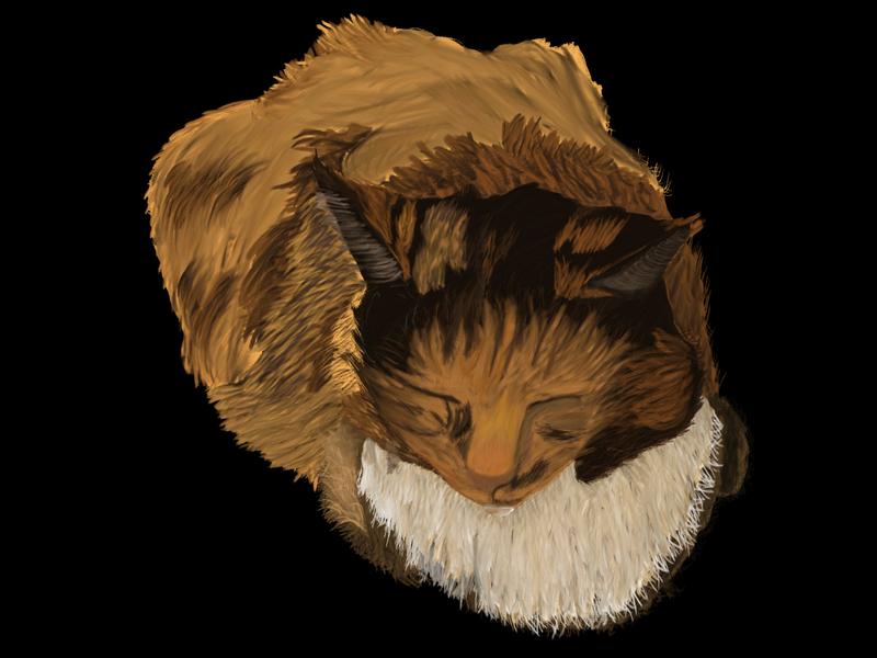 Kitten The Majestic Puff Vr#1