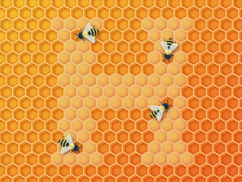 H honey dribbble