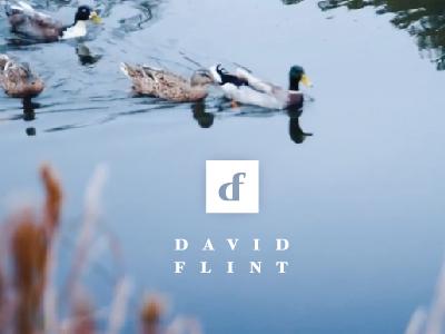 David Flint Branding monogram f d initials identity logo branding