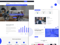 Business/finance consulting theme
