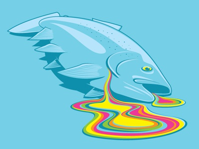Rainbow Trout glennz rainbow trout art vector illustration tee tshirt