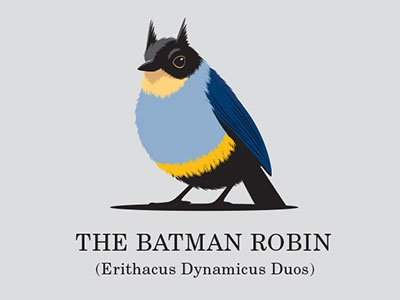 The Batman Robin vector illustration illustrator tshirt bird robin batman glenn jones glenn
