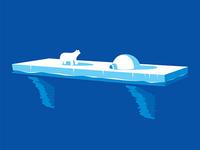 Polar Ice Shelf