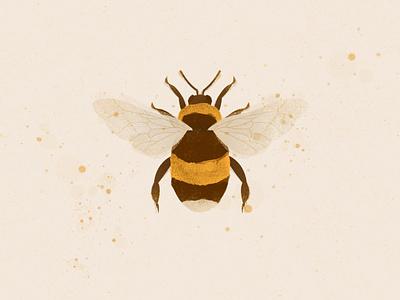 BEE animal illustration animal art bee photoshop illustrator illustration digital illustration art illustration digital illustration digital art