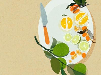 AGRUMES stilllife citrus lemon agrume food food illustration photoshop illustrator illustration digital illustration art illustration digital illustration digital art