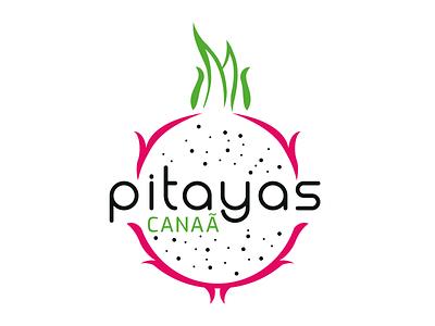 Pitayas Canaã design branding logotype identidade visual designs pitayas logo pitayas logo