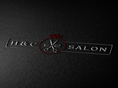Logo Design Ideas foe Salon