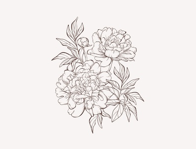 Vector sketch peony flowers bouquet