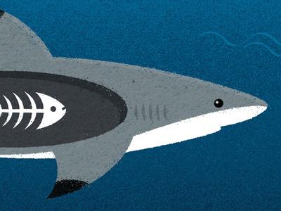Vancouver Aquarium - 'The Secret World of Sharks & Rays'