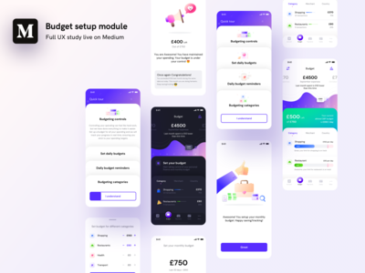 Budget setup model full UX study live on MEDIUM