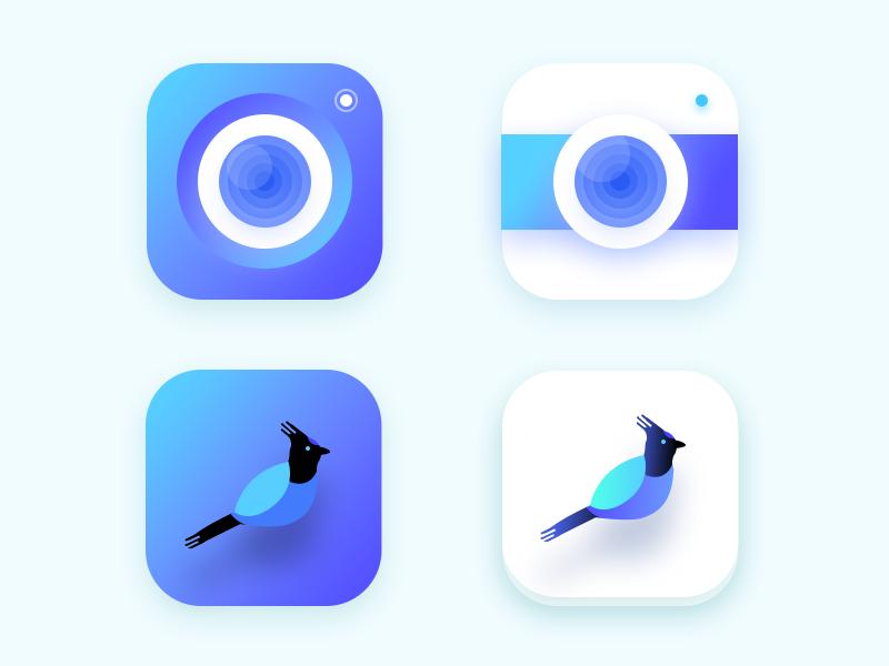 Insta Like App ( 2016 unused icons part 2 ) user profile bird blue lens camera photo feed ios app instagram insta