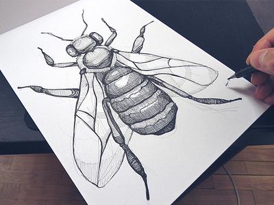 Bee bee illustration bee logo bee custom illustration brand paper handmade logo handmade inked pen process spovv illustration sketch drawing character