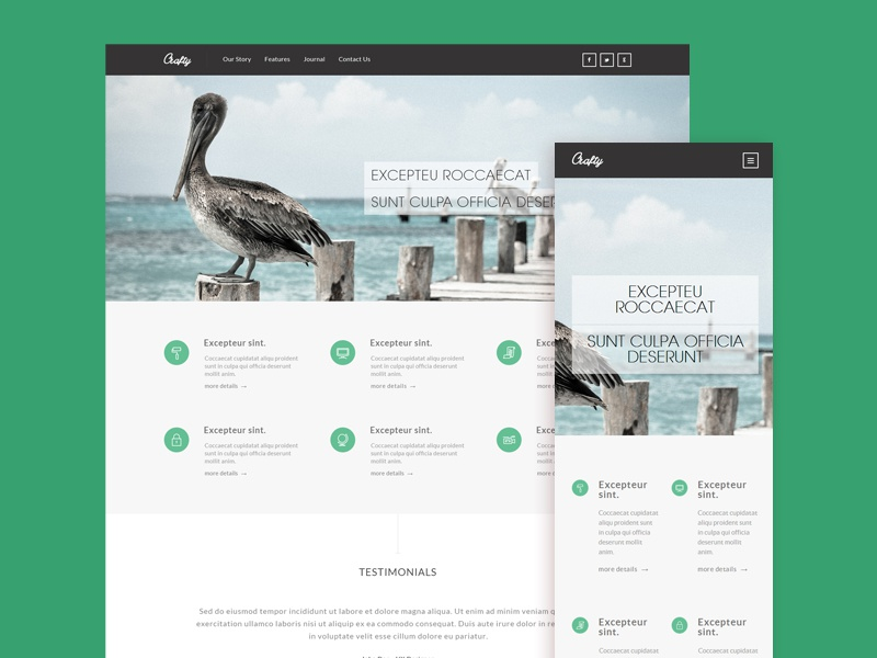 Free Responsive HTML5/CSS3 Template by pixel hint - Dribbble