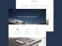 Sublime Website Template - Freebie