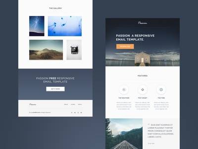 Responsive HTML Email Template - freebie modern orange blue clean free freebie psd html email template email responsive fluid