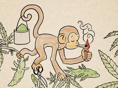 Fire Monkey year of the monkey monkey weed cute cartoon illustration character design cannabis marijuana 2d