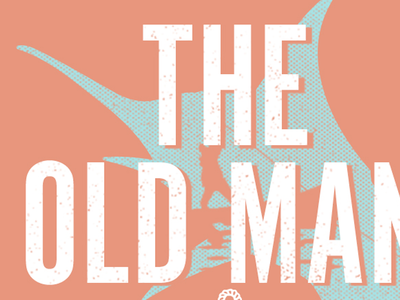The Old Man & The Sea recovered books books redesign