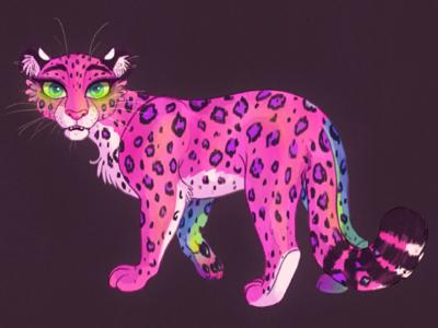 Pink Leopard Full