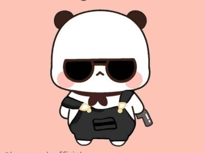 Cop Panda