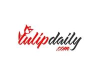 Tulip Daily